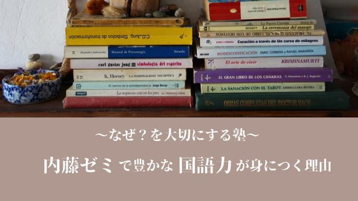 【なぜ?を大切にする塾】内藤ゼミで豊かな国語力が身につく理由
