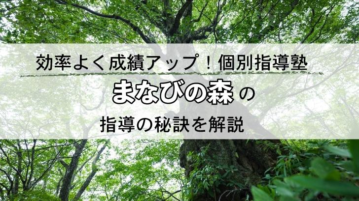 効率よく成績アップ!個別指導塾「まなびの森」の指導の秘訣を解説